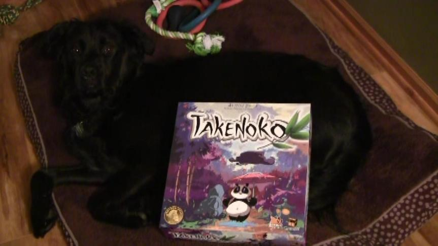 Takenoko Strategy Primer