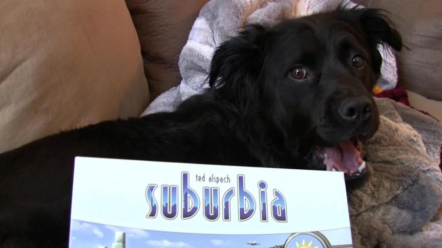 Suburbia Strategy Primer